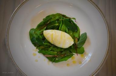 Helado de romero, aceite de oliva y hierbas frescas (acedera, menta, hierbabuena, capuchina y brotes de betabel)